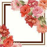 Carte postale avec le bouquet de luxe des pivoines Photographie stock libre de droits