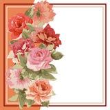 Carte postale avec le bouquet de luxe des pivoines Photos libres de droits
