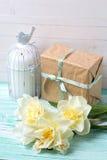 Carte postale avec les fleurs, la bougie et le boîte-cadeau frais de jonquilles Image stock