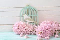 Carte postale avec les hyacynths et l'oiseau de fleurs fraîches Photo stock