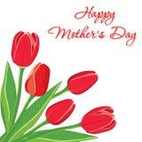 Carte postale avec les tulipes rouges Illustration de vecteur Photo libre de droits