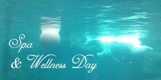 Carte postale avec un ours blanc lumineux qui nage avec une eau du fond de boule dans les eaux d'une turquoise images libres de droits