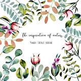 Carte postale de calibre avec des branches d'eucalyptus, des bourgeon floraux roses de pivoine et l'illustration d'aquarelle de p Image libre de droits