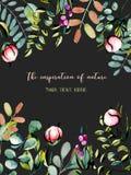 Carte postale de calibre avec des branches d'eucalyptus, des bourgeon floraux roses de pivoine et l'illustration d'aquarelle de p Images stock