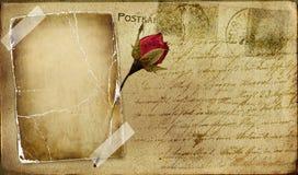 Carte postale de cru illustration de vecteur