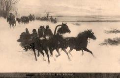Carte postale de cru. Images stock