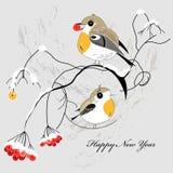 Carte postale de l'hiver avec des oiseaux Image libre de droits