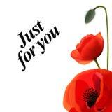 Carte postale de pavots avec un texte Fleurs sur un fond Illustration Stock