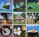 Carte postale de voyage de collage de Fijian Photographie stock libre de droits
