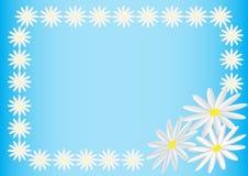 Carte postale des fleurs Images libres de droits