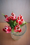Carte postale des tulipes Images stock