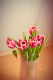Carte postale des tulipes Photo stock