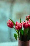 Carte postale des tulipes Images stock