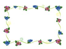 Carte postale florale Photos stock