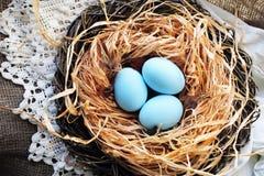 Carte postale heureuse de Pâques avec les oeufs assez bleus dans le nid avec la dentelle et la toile de jute Photo stock