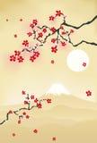 Carte postale japonaise de fleur de cerise Photographie stock libre de droits