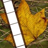 Carte pour des photos dans le film, fond d'automne Photographie stock