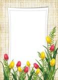 Carte pour les vacances avec la fleur Photo libre de droits