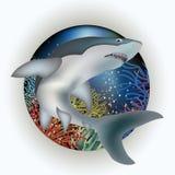 Carte sous-marine avec le requin Images stock