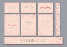 Carte stabilite di nozze con gli ambiti di provenienza rosa dei coriandoli dei cuori Immagine Stock Libera da Diritti