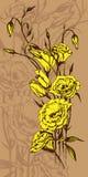 Carte tirée par la main avec les fleurs jaunes d'eustoma Photographie stock libre de droits