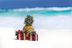 Carte tropicale de vacances, partie pour des vegans Photos stock