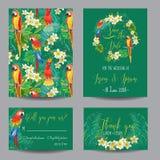 Carte tropicali degli uccelli e dei fiori Fotografie Stock Libere da Diritti