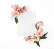 Carte vide avec l'alstroemeria de fleurs sur le fond blanc Photos stock