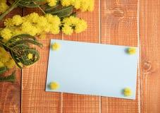 Carte vide bleue avec la mimosa Image stock