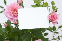 Carte vierge avec des fleurs Photos libres de droits