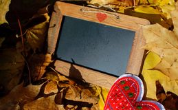 Carte vierge avec le thème d'amour de coeur d'automne de l'espace de copie Photos libres de droits