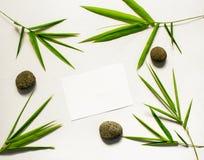 Carte vierge avec les feuilles tropicales Décor en bambou Station thermale ou calibre de bannière de beauté avec l'endroit pour l Images libres de droits