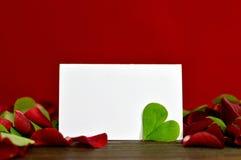 Carte vierge de valentines, feuille en forme de coeur et pétales de rose Image stock