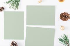 Carte vuote, albero di Natale, pigne, arancia asciutta, Natale b Fotografia Stock Libera da Diritti