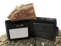A carteira com euro Fotografia de Stock