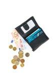 Carteira com euro e cartão Imagem de Stock Royalty Free