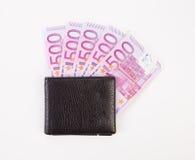 Carteira com euro- notas de banco Imagem de Stock