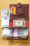 Carteira com os cartões do papel moeda e de crédito Imagens de Stock