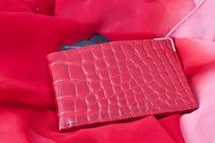 Carteira do cartão de crédito Imagem de Stock