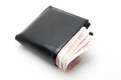 Carteira do dinheiro Imagens de Stock Royalty Free