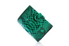 Carteira verde do couro do pitão Fotos de Stock