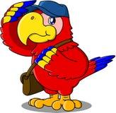 Carteiro do papagaio Imagem de Stock Royalty Free