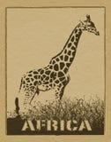 Cartel africano Fotos de archivo libres de regalías