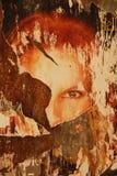 Cartel atado con correa Imagenes de archivo
