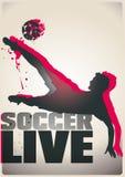Cartel bicolor del fútbol Imagen de archivo
