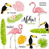 Cartel con el tucán, el flamenco y las hojas de palma Ejemplo tropical del vector Imagenes de archivo