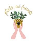 Cartel con las manos de la mujer con la planta tropical y el texto caseros - las plantas del ` son el ` de los amigos Ilustración libre illustration