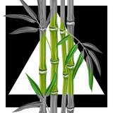 Cartel con las plantas y las hojas de bambú Foto de archivo