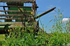 Cartel dans les mauvaises herbes Image libre de droits