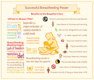 Cartel de amamantamiento acertado Plantilla de maternidad de Infographic Imágenes de archivo libres de regalías